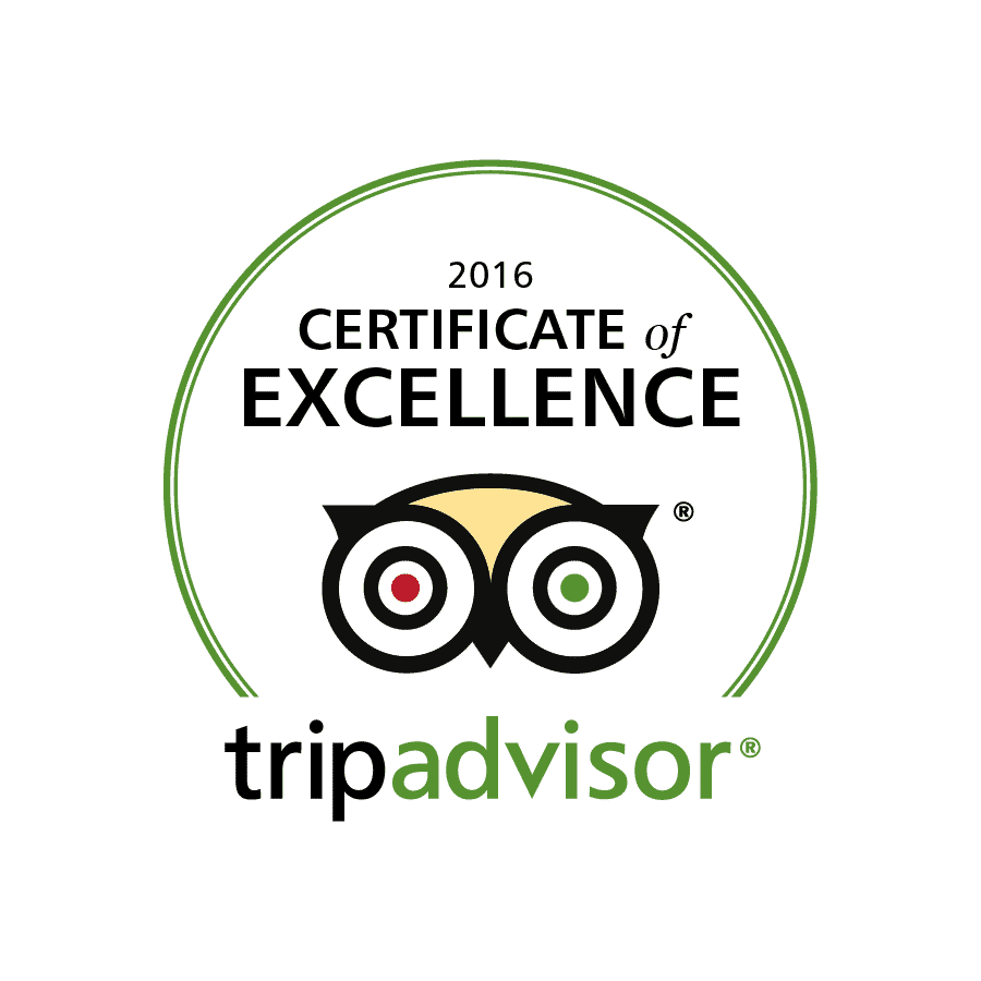 LingoTaxi Certificate of Excellence 2016